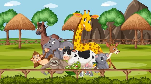 Scena con animali selvatici nello zoo a tempo di giorno Vettore Premium