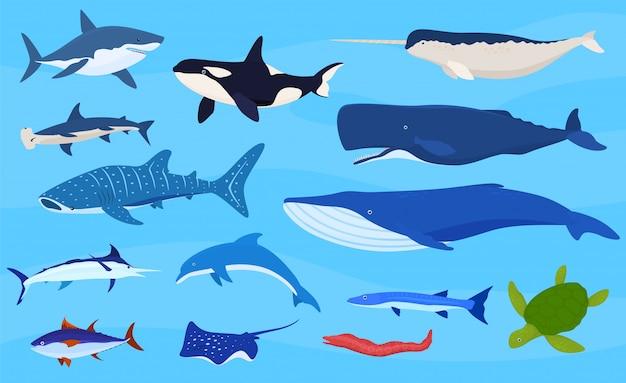 Collezione di animali marini Vettore Premium