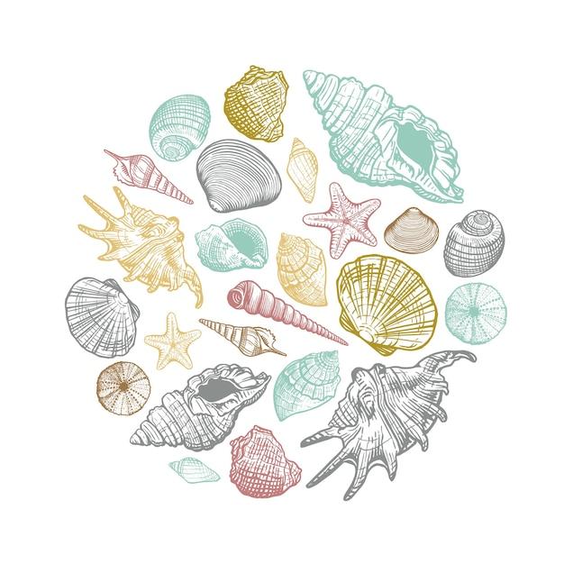 Modello rotondo conchiglia di mare. conchiglie colorate disegnate a mano dal cerchio. illustrazione per la progettazione Vettore Premium