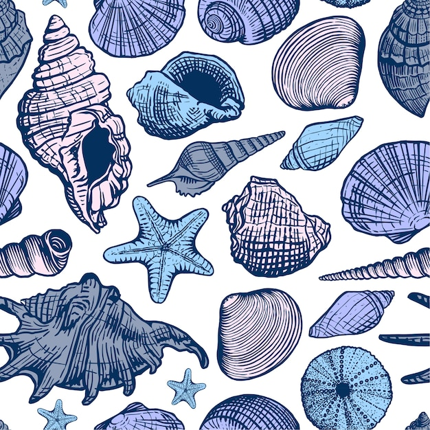 Modello senza cuciture variopinto di conchiglie di mare. shell bella illustrazione disegnata a mano. sfondo marino. Vettore Premium