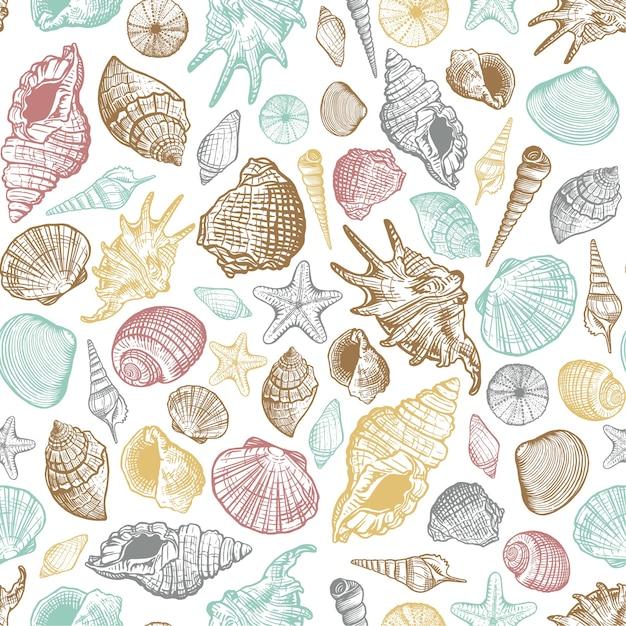 Modello senza cuciture di colore alla moda di conchiglie di mare. fondo marino disegnato a mano realistico con le coperture del mollusco acquatico dell'oceano della natura Vettore Premium