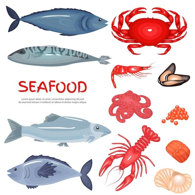 Set di sfondo di prelibatezze di frutti di mare e frutti di mare Vettore Premium