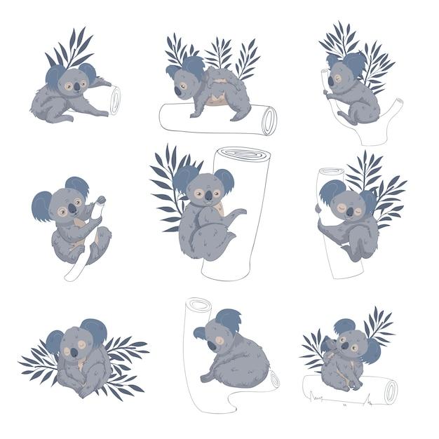 Set di adorabili orsi koala su tronchi e rami di alberi. animale australiano. creatura selvaggia. tema della fauna selvatica Vettore Premium