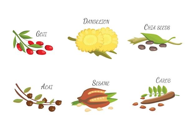 Set di supercibi dei cartoni animati. priorità bassa di schizzo di frutta fresca. illustrazione per il tuo. Vettore Premium