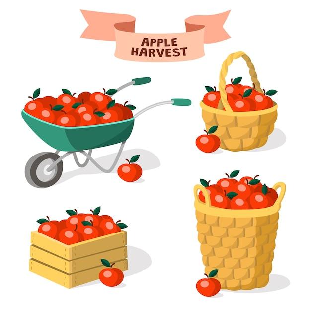 Set di contenitori per mele. raccolta delle mele. carriola da giardino, cassetta di legno, cestini di mele. Vettore Premium