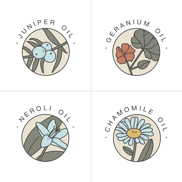 Impostare modelli di design ed emblemi oli sani e cosmetici Vettore Premium