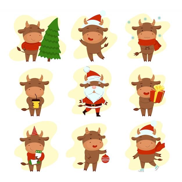 Set di diversi tori carini felici. felice anno nuovo. simbolo del capodanno cinese cartolina di natale. 2021 anno. illustrazione del fumetto piatto isolato su priorità bassa bianca Vettore Premium