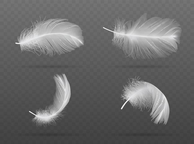 Set di caduta di piume di uccello bianco su uno sfondo scuro Vettore Premium