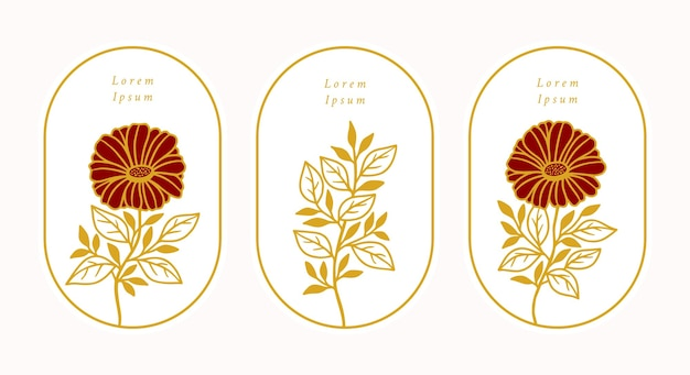 Set di fiori di gerbera margherita botanica oro vintage disegnati a mano Vettore Premium