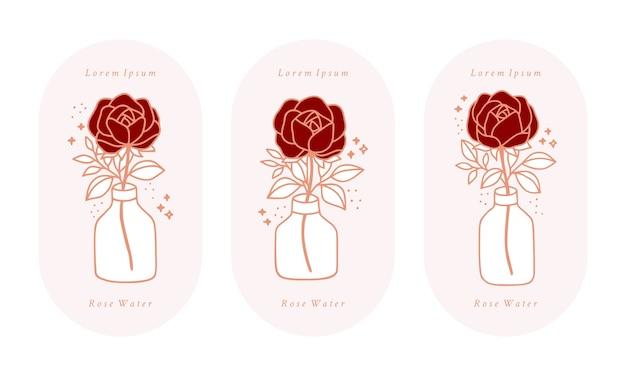 Set di fiore rosa botanico rosa vintage disegnato a mano, Vettore Premium