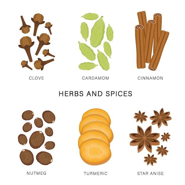 Set di erbe e spezie. illustrazione dell'elemento isolata alimento organico e sano. Vettore Premium