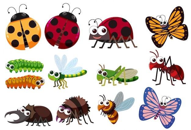 Un set di insetti Vettore Premium