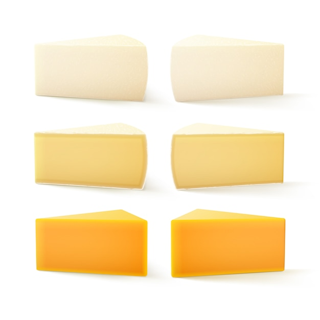 Set di pezzi di formaggio svizzero cheddar bri camembert Vettore Premium