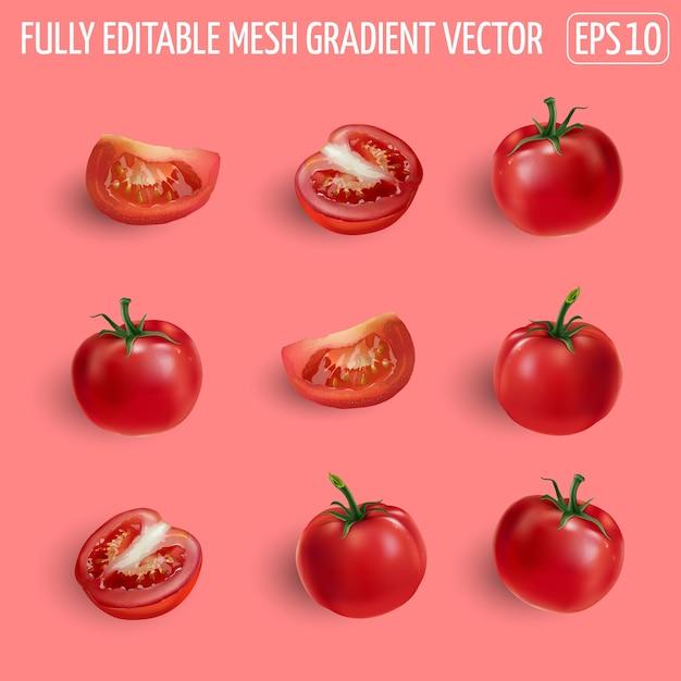 Set di pomodori rossi maturi - interi, metà e fetta. illustrazione realistica. Vettore Premium
