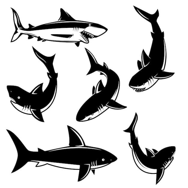 Set di illustrazioni di squalo. elemento per poster, stampa, emblema, segno. illustrazione Vettore Premium