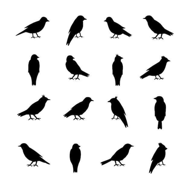 Set di sagome di uccelli su sfondo bianco. Vettore Premium