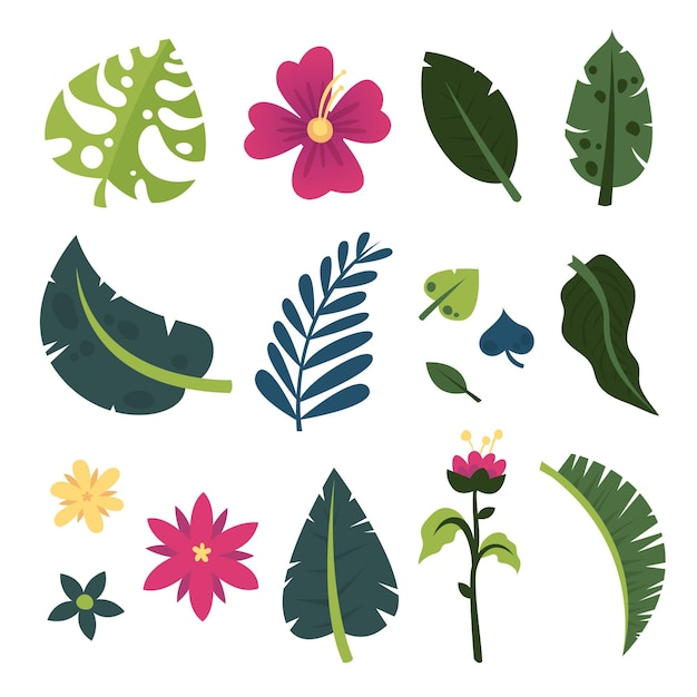 Insieme di fiori e foglie tropicali di estate Vettore Premium
