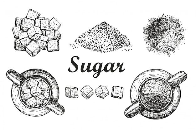 Impostare lo zucchero di cristallo raffinato dolce e lo zucchero su sfondo bianco sfuso. ingrediente per caffè, tè. zucchero in zuccheriera. illustrazione stile schizzo. elementi disegnati a mano Vettore Premium