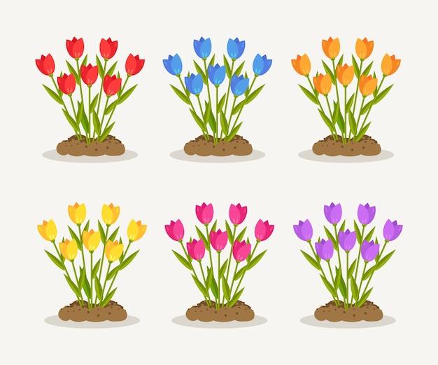 Set di tulipani, rose rosse, mazzo di fiori con mucchio di sporco, terra su sfondo bianco. bouquet floreale, pianta con fiori e foglie. giardino estivo, foresta di primavera. Vettore Premium