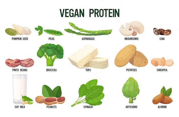 Impostare fonti vegane di raccolta di alimenti vegetariani biologici freschi proteici isolati Vettore Premium