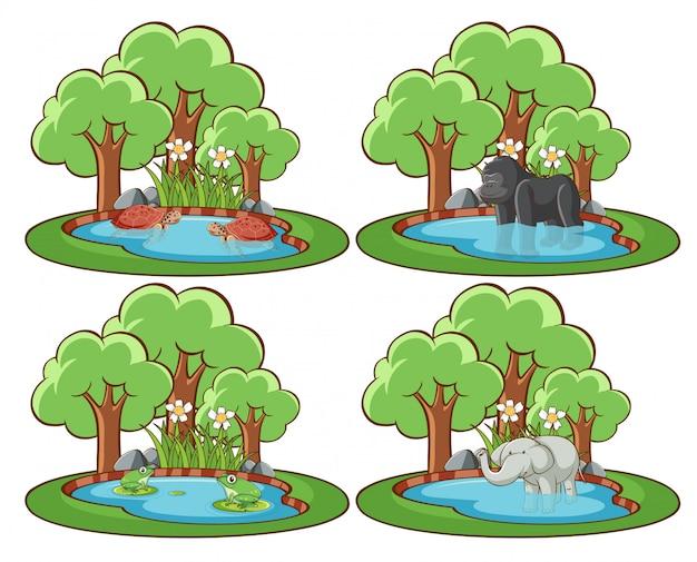 Insieme di animali selvatici nel parco con stagno e albero Vettore Premium