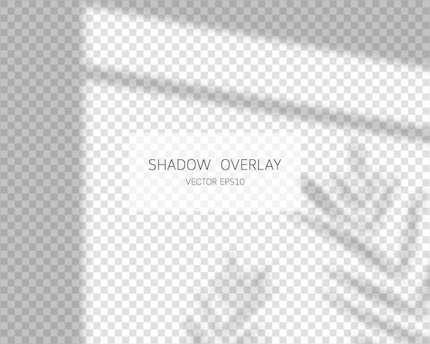 Effetto di sovrapposizione dell'ombra. lascia le ombre. ombre naturali dall'illustrazione isolata finestra. Vettore Premium