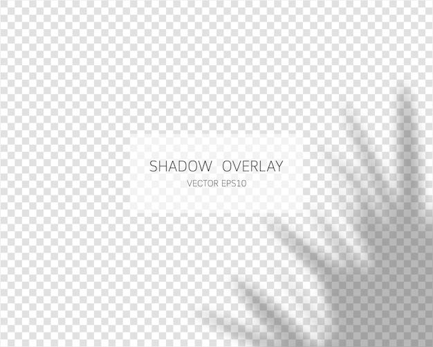 Effetto di sovrapposizione dell'ombra. ombre naturali su sfondo trasparente. illustrazione. Vettore Premium