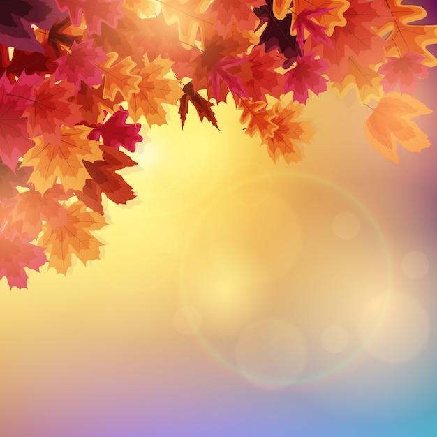 Foglie di autunno lucide. illustrazione Vettore Premium
