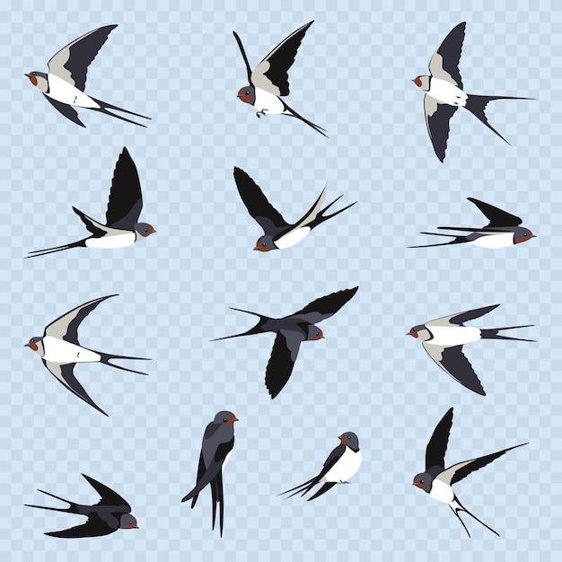 Semplici rondini su sfondo azzurro trasparente. tredici rondini volanti in stile cartone animato. uccelli in volo in diversi punti di vista. Vettore Premium