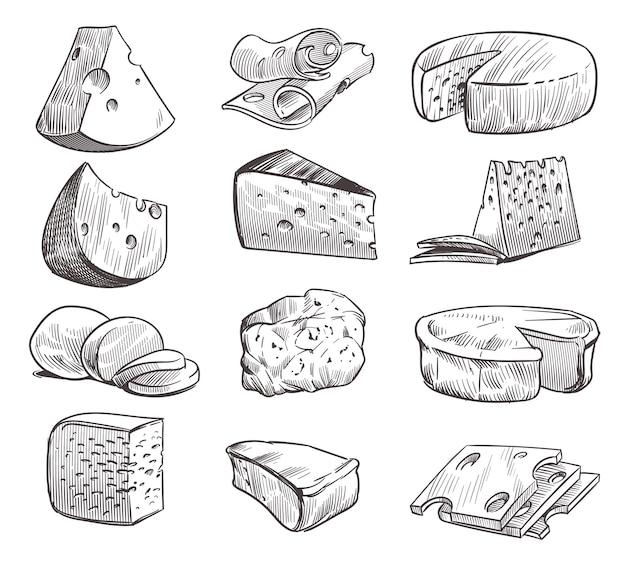 Formaggio di schizzo. vari tipi di formaggi. spuntino fresco di formaggio cheddar, feta e parmigiano. Vettore Premium