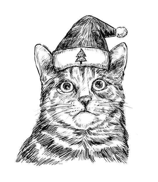 Schizzo di tiraggio della mano del gatto di natale Vettore Premium