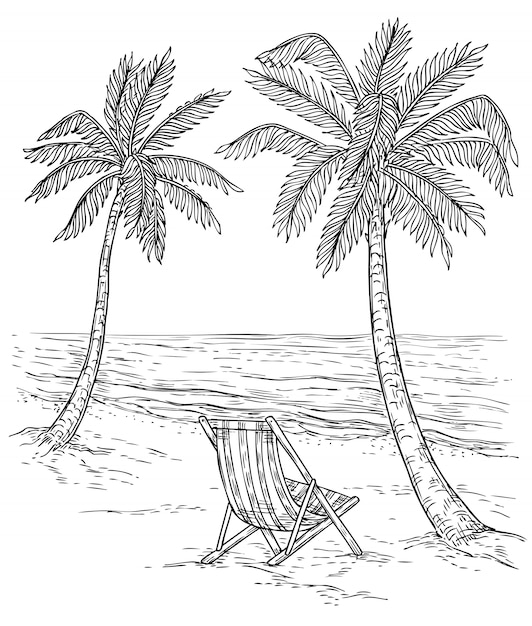 Schizzo Paesaggio Di Palme Palm Beach Tropicale Alberi Esotici E Onde Del Mare Disegno A Mano Vintage Rilassante Sfondo Estivo Vettore Premium