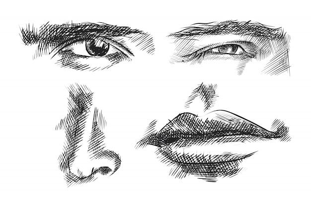 Insieme di schizzo di parti facciali disegnate a mano. set composto da fronte e occhio che guardano dritti, fronte e occhio che guardano a destra, naso, bocca chiusa Vettore Premium