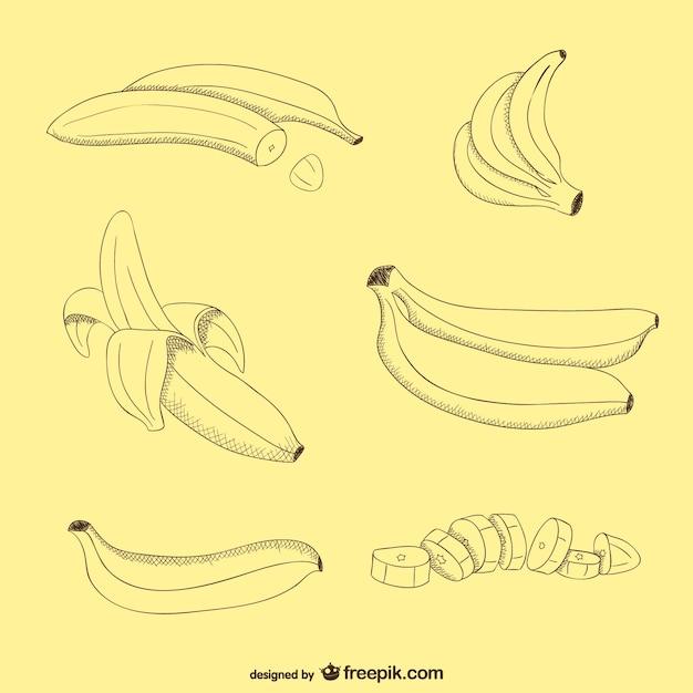 Banane vettore libero Vettore Premium
