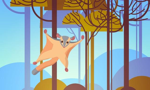Aliante dello zucchero che vola in orizzontale australiano del paesaggio di concetto di fauna della fauna selvatica dell'animale selvatico della foresta Vettore Premium