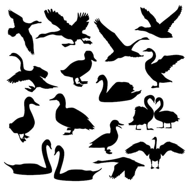 Clip art di swan bird animal silhouette Vettore Premium