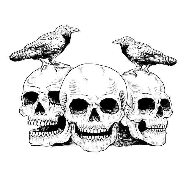 Tatuaggio e t-shirt teschio e uccello Vettore Premium
