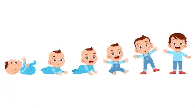 Processo del ciclo di crescita del bambino Vettore Premium