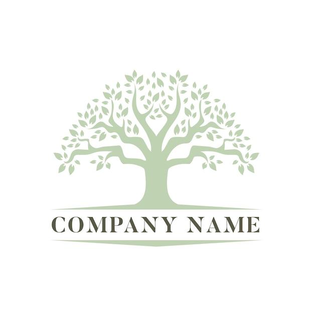 Modello di logo di vita dell'albero Vettore Premium