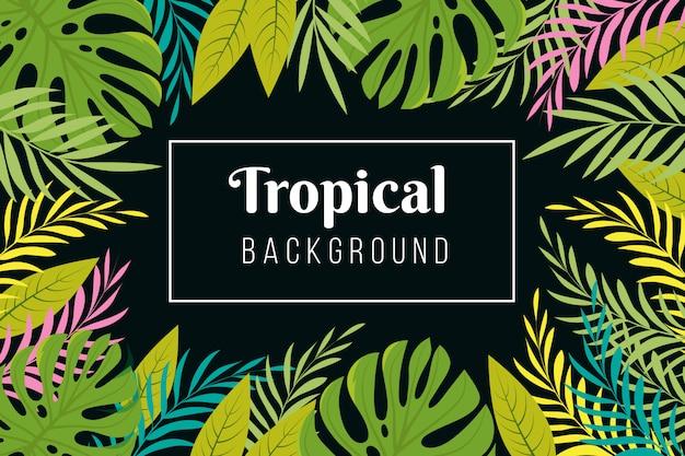 Sfondo tropicale. la foresta pluviale lascia la struttura delle foglie. foresta della giungla che pianta carta da parati esotica Vettore Premium