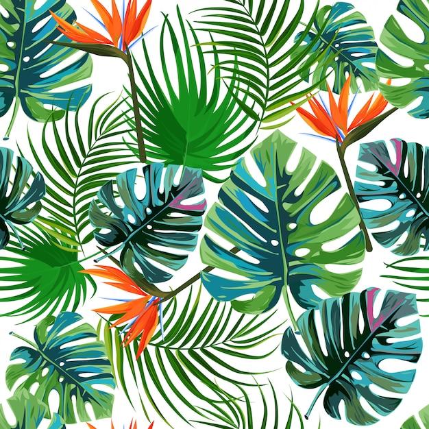 Modello tropicale delle foglie di palma esotiche. Vettore Premium