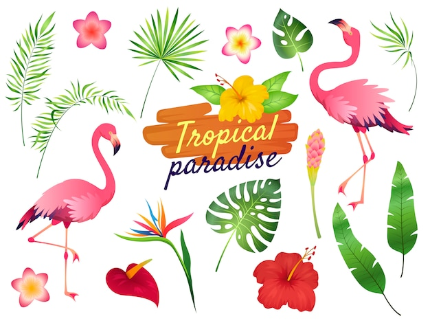 Illustrazione di fenicotteri tropicali. Vettore Premium