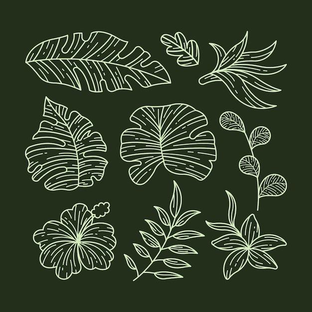 Collezione di fiori e foglie tropicali Vettore Premium