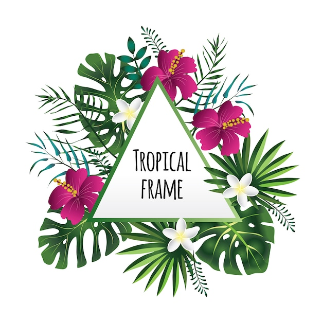 Cornice tropicale, modello con posto per il testo. illustrazione, su bianco. Vettore Premium
