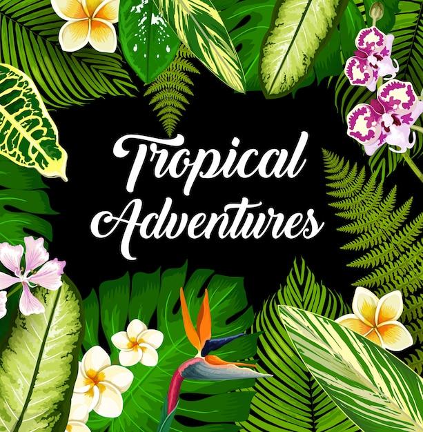 Piante e fiori tropicali, poster di foglie di palma Vettore Premium