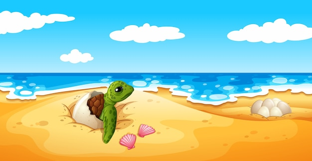 Le uova di tartaruga si schiudono sulla sabbia Vettore Premium