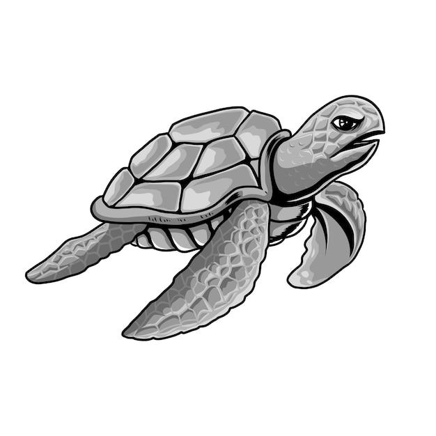 Illustrazione grigio tartaruga Vettore Premium