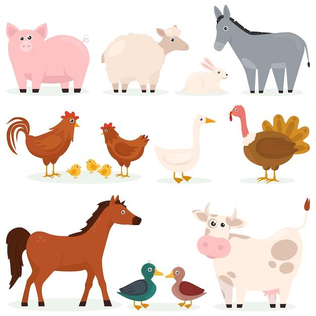 Vari animali animali domestici fattoria set piatto di personaggi dei cartoni animati Vettore Premium