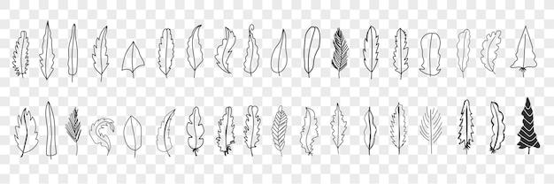 Insieme di doodle di varie piume di uccello. raccolta di sagoma elegante carina disegnata a mano e modelli di piume di uccelli diversi isolati. Vettore Premium