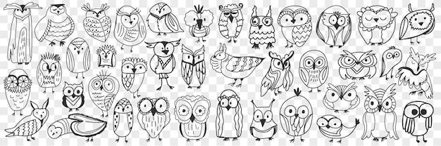 Insieme di doodle di uccelli vari gufi. collezione di uccelli notturni simpatici gufi disegnati a mano di varie forme e dimensioni che mostrano facce isolate. Vettore Premium